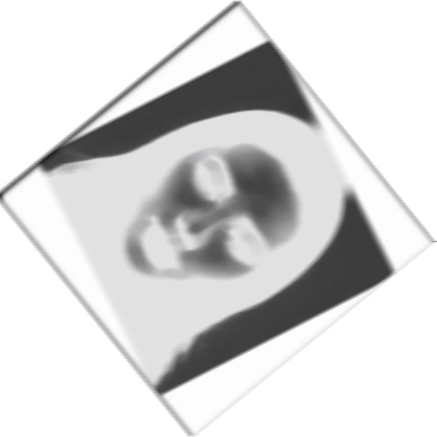 Live webcam girls free